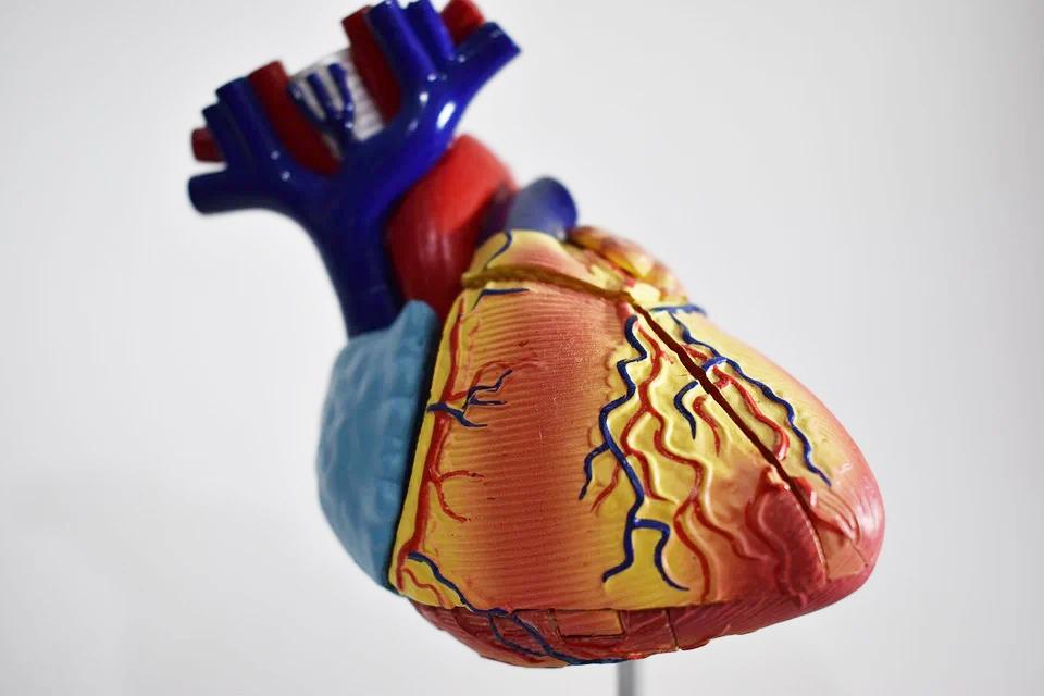 長期胸悶胸痛恐罕病影響心臟健康 「法布瑞氏症」未及早診斷恐短命20年!