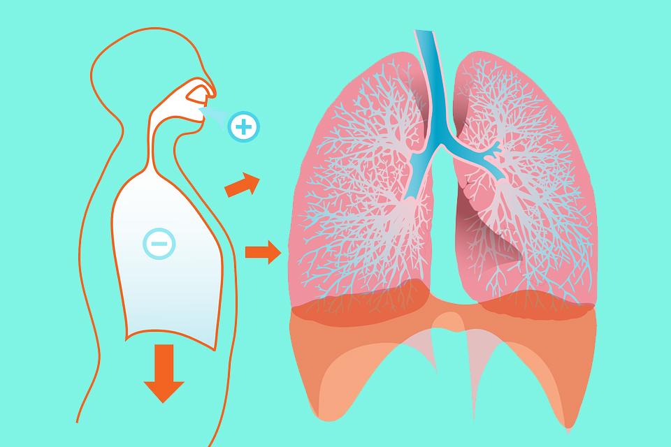 呼吸急促、喘或是咳嗽等慢性肺阻塞疾病症狀 可能因全球暖化而加重病情
